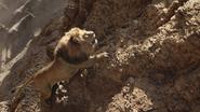 Lionking2019-animationscreencaps.com-4998