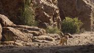 Lionking2019-animationscreencaps.com-5123