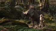 Lionking2019-animationscreencaps.com-9318