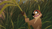 Lion-king2-disneyscreencaps.com-918