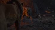 Lionking2019-animationscreencaps.com-11560