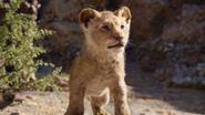 Lionking2019-animationscreencaps.com-4568