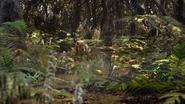 Lionking2019-animationscreencaps.com-9004