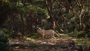 Lionking2019-animationscreencaps.com-9285