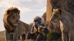 Lionking2019-animationscreencaps.com-12766