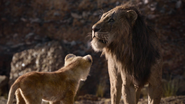 Lionking2019-animationscreencaps.com-4428