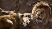 Lionking2019-animationscreencaps.com-4891