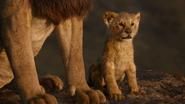 Lionking2019-animationscreencaps.com-1426