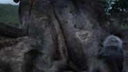 Lionking2019-animationscreencaps.com-5957