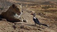Lionking2019-animationscreencaps.com-7145