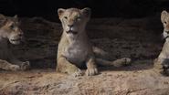 Lionking2019-animationscreencaps.com-7276
