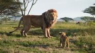 Lionking2019-animationscreencaps.com-1644
