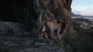 Lionking2019-animationscreencaps.com-1280