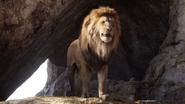 Lionking2019-animationscreencaps.com-902