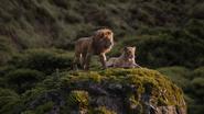 Lionking2019-animationscreencaps.com-9568