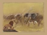 Elephants-KingOfTheJungle