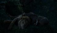 Simba, Pumbaa & Timon LA EW