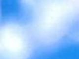 Around the World with Timon & Pumbaa