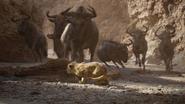 Lionking2019-animationscreencaps.com-4711