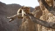 Lionking2019-animationscreencaps.com-4856