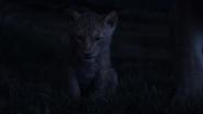 Lionking2019-animationscreencaps.com-3702