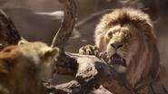 Lionking2019-animationscreencaps.com-4884
