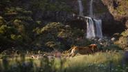 Lionking2019-animationscreencaps.com-9378
