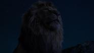 Lionking2019-animationscreencaps.com-3688