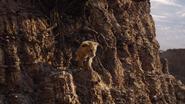 Lionking2019-animationscreencaps.com-5650