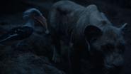 Lionking2019-animationscreencaps.com-7652