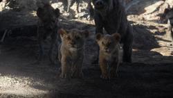 Lionking2019-animationscreencaps.com-3171
