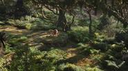 Lionking2019-animationscreencaps.com-6961