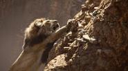 Lionking2019-animationscreencaps.com-4988
