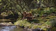 Lionking2019-animationscreencaps.com-7982