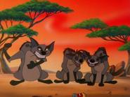 BTB hyenas4