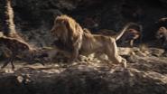 Lionking2019-animationscreencaps.com-3338