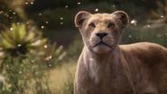Lionking2019-animationscreencaps.com-9415