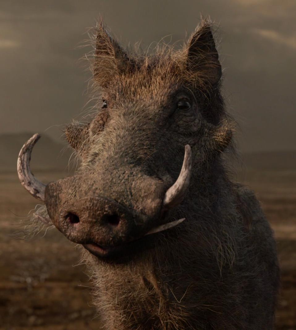 Pumbaa 2019 Filmmain Article The Lion King Wiki