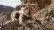 Lionking2019-animationscreencaps.com-4872