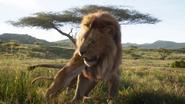 Lionking2019-animationscreencaps.com-1608