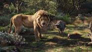 Lionking2019-animationscreencaps.com-7949