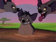 TVD hyenas10