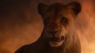 Lionking2019-animationscreencaps.com-11958