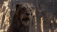 Lionking2019-animationscreencaps.com-5416