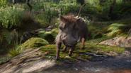 Lionking2019-animationscreencaps.com-8006