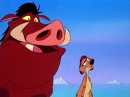 YC Timon & Pumbaa34