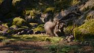 Lionking2019-animationscreencaps.com-9078