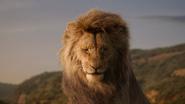 Lionking2019-animationscreencaps.com-1421