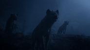 Lionking2019-animationscreencaps.com-4123
