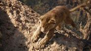 Lionking2019-animationscreencaps.com-5533